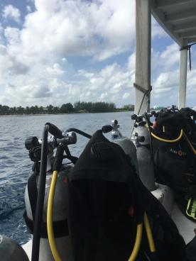 Going diving in Cozumel